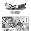 Manga Dragon Ball Super – rozdział 46 w Manga Plus